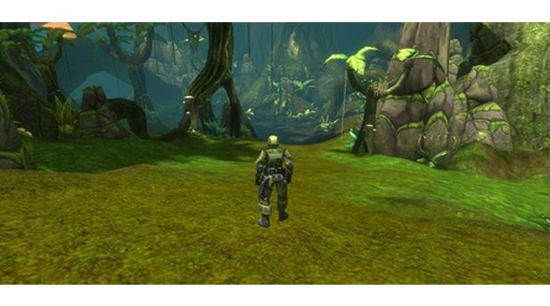 Halo MMO