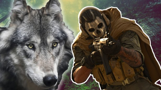 Howling wolves in CoD: Warzone pose another puzzle for the players.