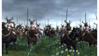 Screenshot aus der Medieval 2 Mod The Elder Scrolls: Total War