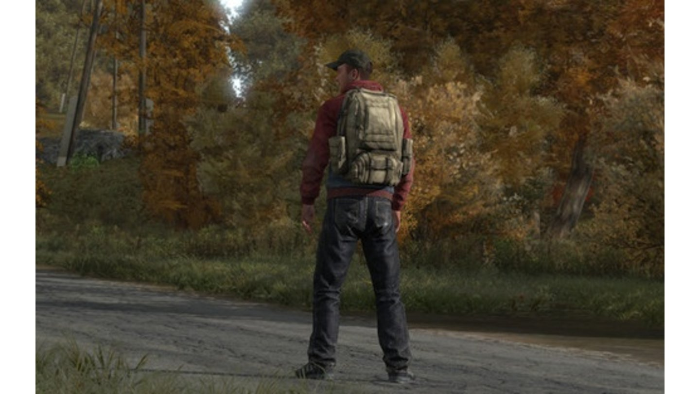 DayZ Stand-Alone-Version