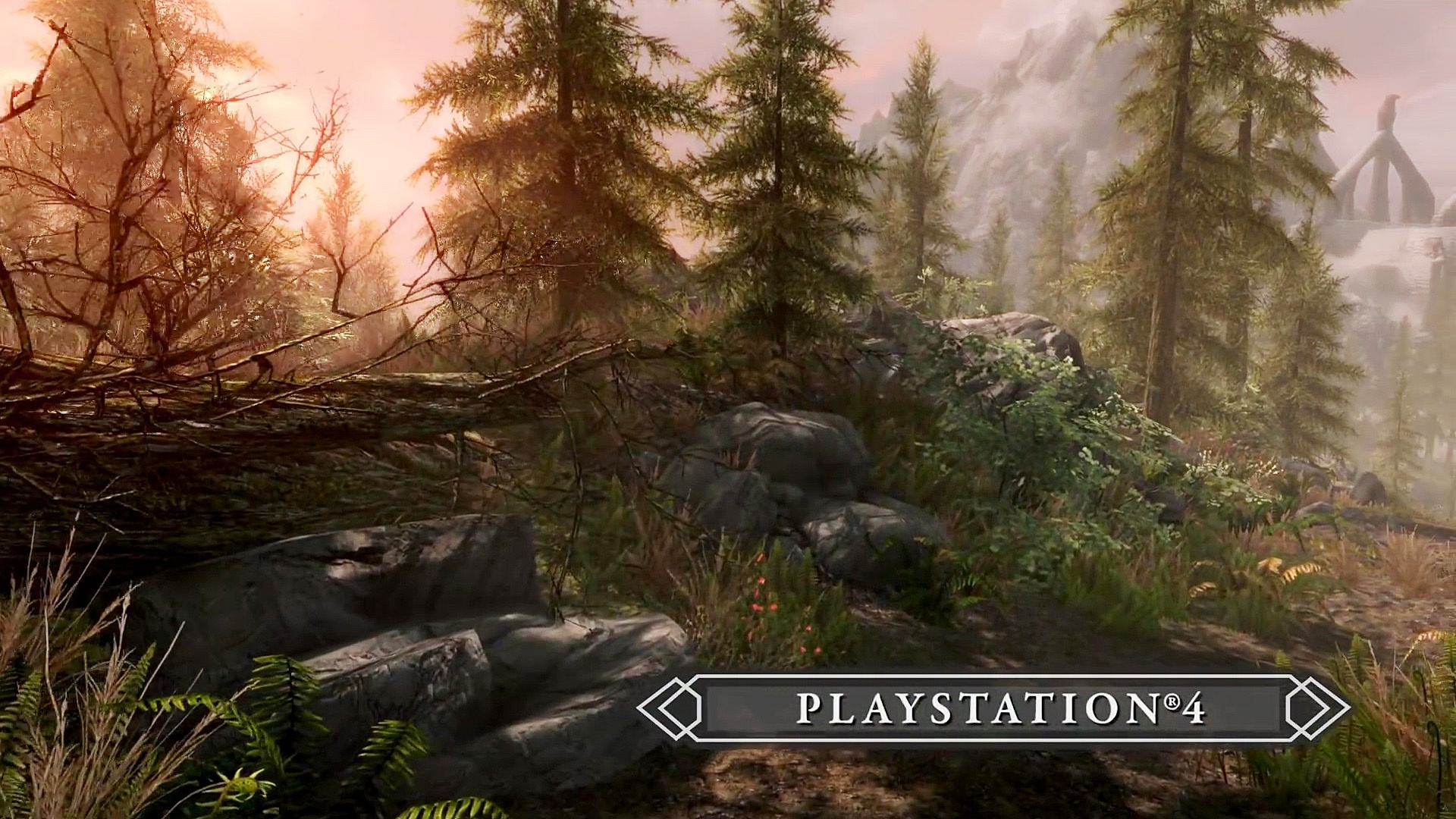 Skyrim: Special Edition - 10 der besten PS4-Mods - GamePro